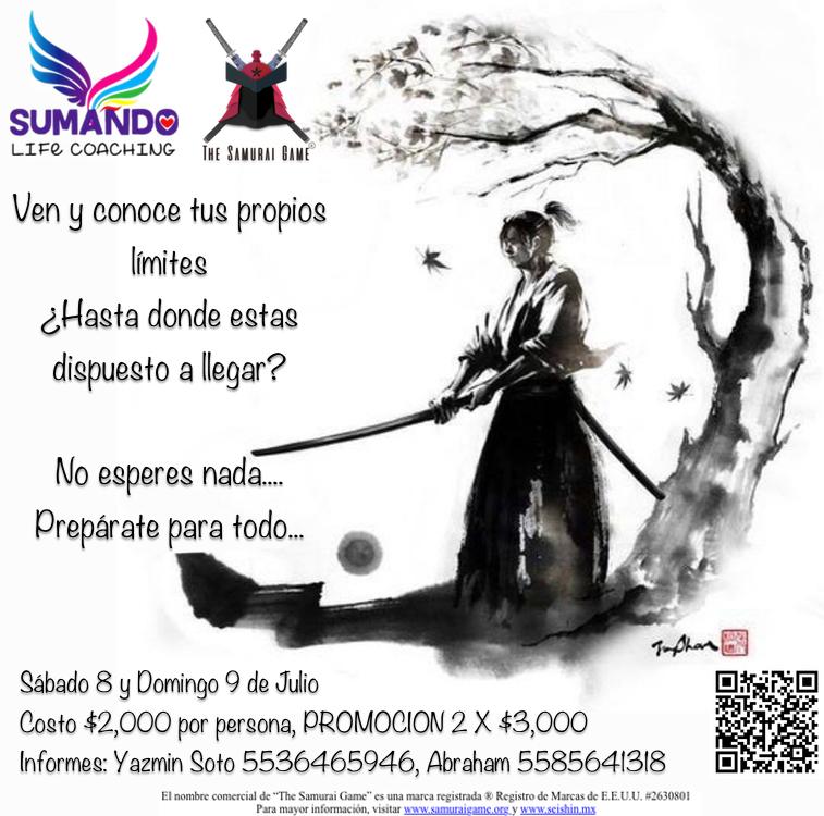 The Samurai Game® Seishin